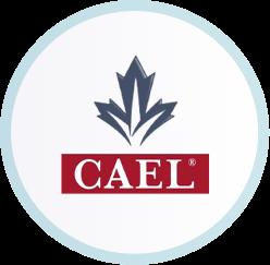 آزمون CAEL